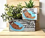 Otter Box, Personalized Bin and Succulent Planter, Multiple Sizes