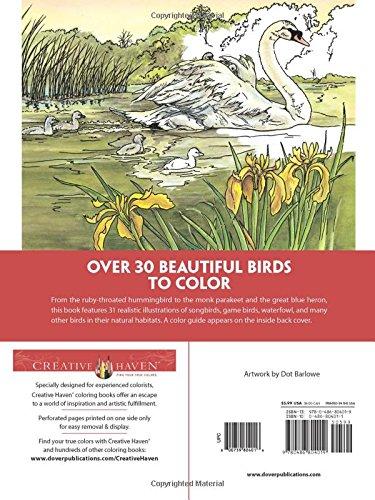 Amazon Creative Haven Beautiful Birds Coloring Book Adult 9780486804019 Dot Barlowe Books