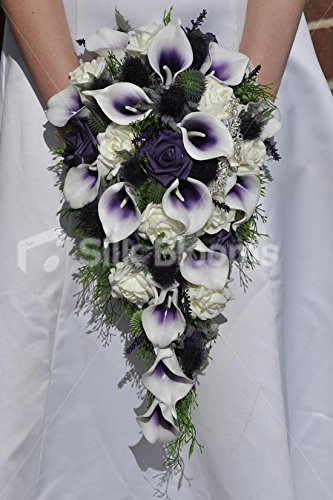 Amazoncom Elegant Rustic Purple Tipped Calla Lily Scottish