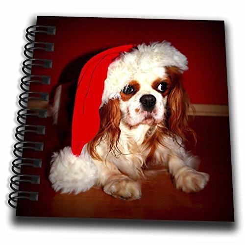 Spaniel Notepad - 3dRose Sandy Mertens Christmas Animals - Christmas Hat on Adorable Cavalier King Charles Spaniel Dog - Mini Notepad 4 x 4 inch (db_269510_3)