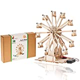 Wooden Ferris Wheel Building Kit | Educational DIY STEM Toys for Boys and Girls | 3D Working Construction Model Kits | Science Kits for Kids, Teens & Adults