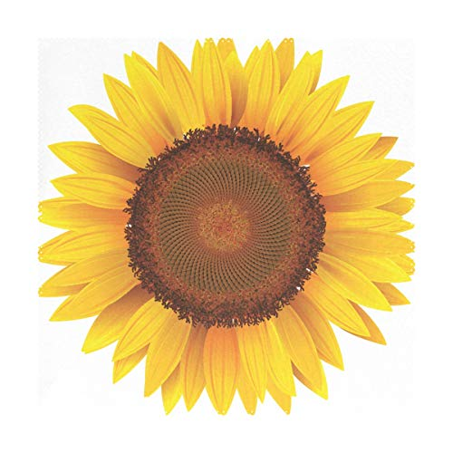 XiangHeFu Placemats Sunflower 12x12 inch Set of 4 Heat Resistant Non Slip for Dinning ()