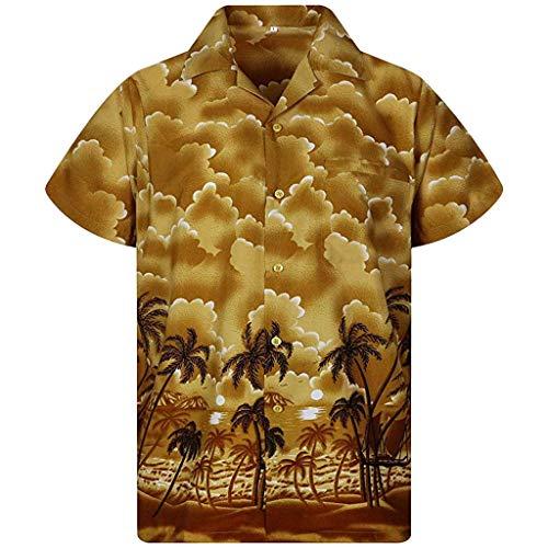 Hawaii Print Beach Top Men's Summer Casual Button Short Sleeve Quick Dry Blouse