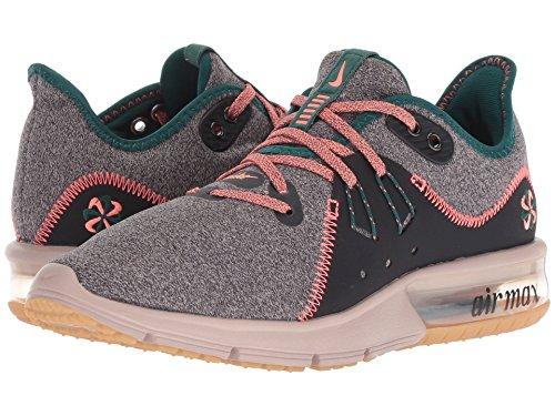 ベテランコイルアイデア[NIKE(ナイキ)] レディーステニスシューズ?スニーカー?靴 Air Max Sequent 3 Premium