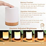 UNIFUN Touch Lamp, Table Bedside Lamps for Bedrooms Living Room Portable Night Light with Rechargeable Internal Battery Dimmable 2800K-3100K Warm White Light & Color Changing RGB