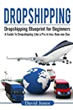 Dropshipping: Dropshipping Blueprint for Beginners - A Guide to Dropshipping Like a Pro in Less than a Day (Dropship Vendors, Dropshipping With Amazon, Wholesalers, Private Label, Amazon FBA)