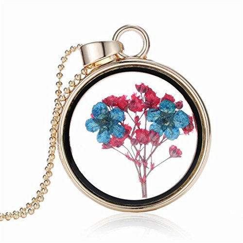[Dry Blue Flower Herbarium In Transparent Round Box Memory Locket Necklace For Women] (Galadriel Costume Design)