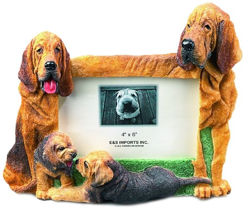 Bloodhound Gift Picture Frame Holds Your Favorite 4x6 Inch Photo, A Hand Painted Realistic Looking Bloodhound Family Surrounding Your Photo. This Beautifully Crafted Frame is A Unique Accent to Any Home or Office. The Bloodhound Picture Frame Is The Perfe by E&S Pets