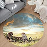 Nalahome Modern Flannel Microfiber Non-Slip Machine Washable Round Area Rug-tahs Africa Nature Grass Dangerous Animals Hunters Rainy Weather Picture Green Blue Ivory area rugs Home Decor-Round 67''