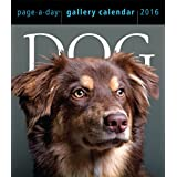 Dog Page-A-Day Gallery Calendar 2016