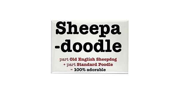 CafePress – Sheepadoodle – rectangular imán, 2