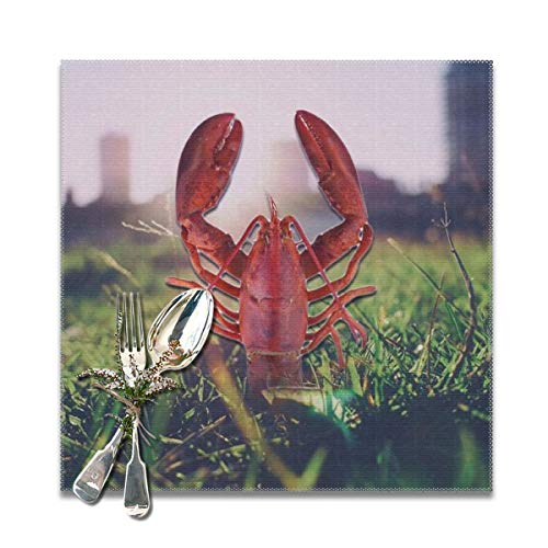 BUN Placemats Square Set of 6 for Dining Room Kitchen Table Decor, Lobster Creative Print Table Mats Washable]()