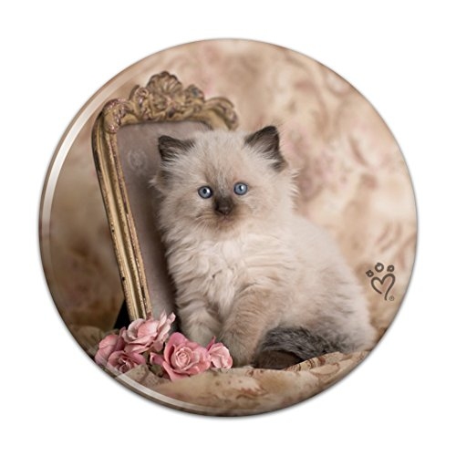 Victorian Rose Mirror - Ragdoll Tiffany Cat Kitten Victorian Roses Compact Pocket Purse Hand Cosmetic Makeup Mirror - 3