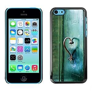 TopCaseStore / la caja del caucho duro de la cubierta de protección de la piel - Teal Heart Door Photo Beautiful Meaning - Apple iPhone 5C