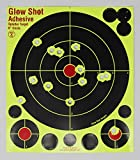 colored shooting targets - 8