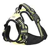 Rnker Front Range Dog Harness, 3M Reflective Outdoor Pet Vest with Handle and Leash Attachments for Medium Dogs (Green) Review