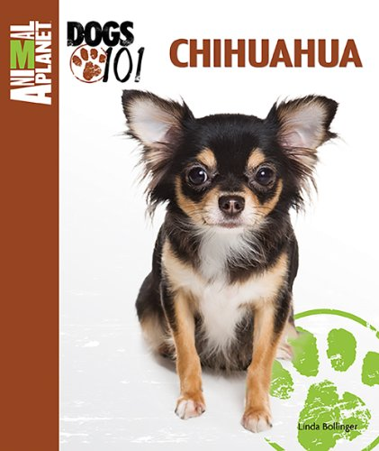Breed Chihuahua (Chihuahua (Animal Planet Dogs 101))