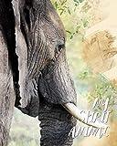 My Spirit Animal: Elephant - Lined Notebook, Diary, Track, Log & Journal - Cute Gift for Kids, Teens, Men, Women Who Love Elephants