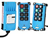 NEWTRY 24V Wireless Crane Remote Control Double Transmitters Industrial Channel Hoist Crane Transmitter Receiver (Two Transmitters + 24V Receiver)
