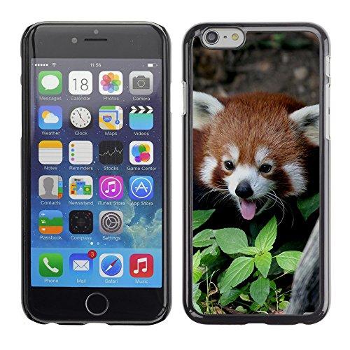 "Premio Sottile Slim Cassa Custodia Case Cover Shell // V00003758 panda rouge 2 // Apple iPhone 6 6S 6G 4.7"""