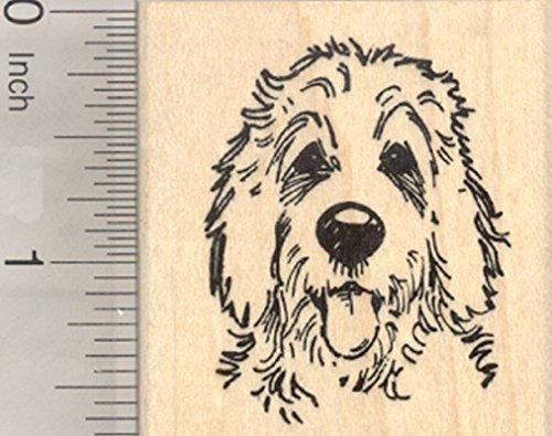 Golden Doodle Rubber Stamp, Dog Hybrid of Poodle and Golden Retriever ()