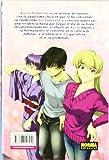 Azul, Ai Yori Aoshi 15 / Blue Ai Yori Aoshi 15 (Spanish Edition)