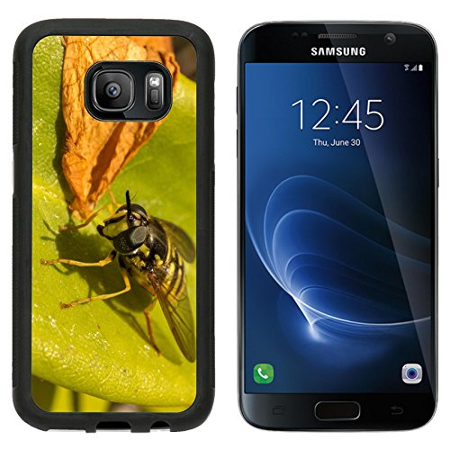 MSD Premium Samsung Galaxy S7 Aluminum Backplate Bumper Snap Case IMAGE ID: 30142654 A Hoverfly on a ()