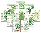 Botanical Interests Non-GMO Herb Garden Seed Collection II - 10 Packets with Gift Box