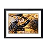 Framed 24x18 Print of Fine link gold and silver chains, black beads, pearls (13557771)