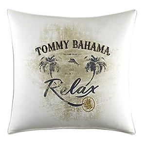 51mqdjVMO-L._SS300_ Coastal Throw Pillows & Beach Throw Pillows