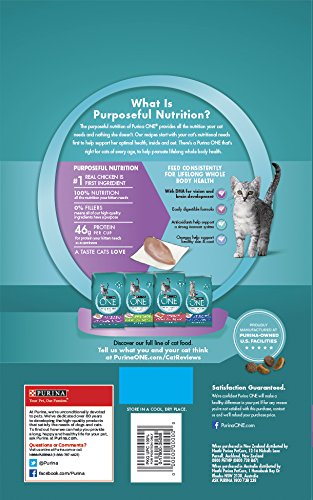 Purina-ONE-Healthy-Kitten-Formula-Premium-Dry-Cat-Food