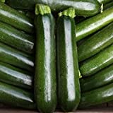 buy Go Garden Courgette - Midnight - 15 Seeds now, new 2020-2019 bestseller, review and Photo, best price