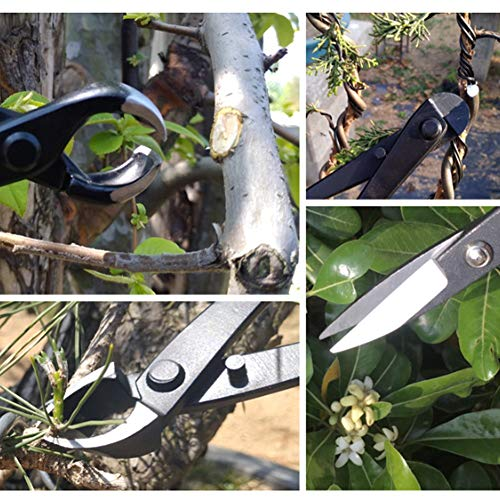 Bonsai Tool Set, 4pcs Multifunctional Bonsai Garden Plant Scissors Trimming Cutting Tool Set Garden Trimming Kit with Storage Bag