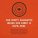 Nature Nate's 100% Pure, Raw & Unfiltered Honey, 16