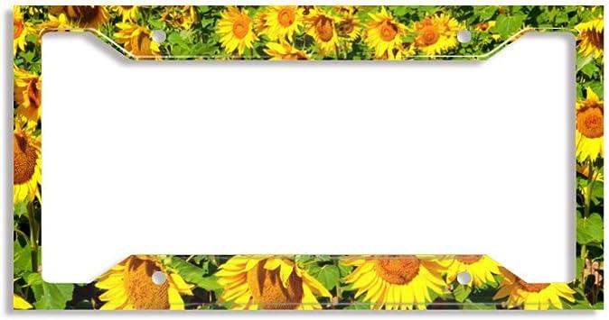 FunnyLpopoiamef Custom License Plate Frame Premium Quality Aluminum License Plate Cover for US and Canada