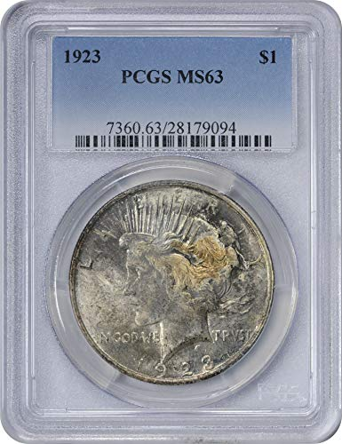 1923 Morgan Silver Dollar Dark Grey Cloudy Toned Obverse w/Gold Spot MS63 PCGS (Toned Obverse)