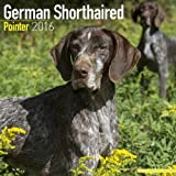 German Shorthaired Pointer Calendar - Only Dog Breed German Shorthaired Pointer Calendar - 2016 Wall calendars - Dog Calendars - Monthly Wall Calendar by Avonside