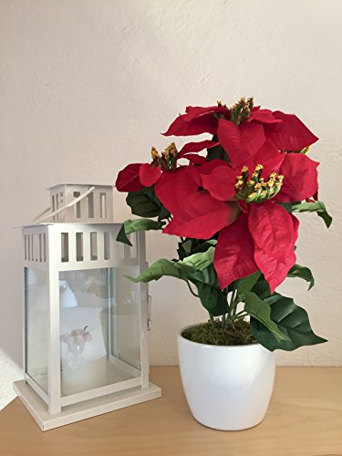 Deutschmade-Artificial-Flower-Red-Poinsettia-Including-White-Ceramic-Vase-14