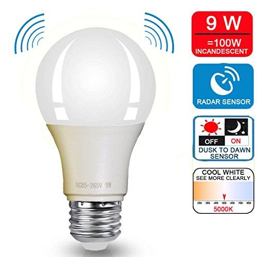 100 Watt Outdoor Light Bulb in Florida - 7