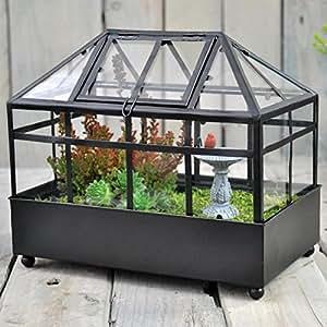 Wardian funda maceta jardín Terrario 9in X 8en decoración para el hogar, negro borde y Base