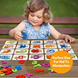 Coogam Numbers and Alphabets Flash Cards Set