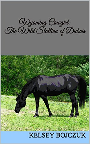 Wyoming Cowgirl: The Wild Stallion of Dubois : From the Wyoming Cowgirl series Book 1 by [Bojczuk, Kelsey]