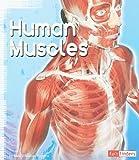 Human Muscles, Jodi Wheeler-Toppen, 1429638842