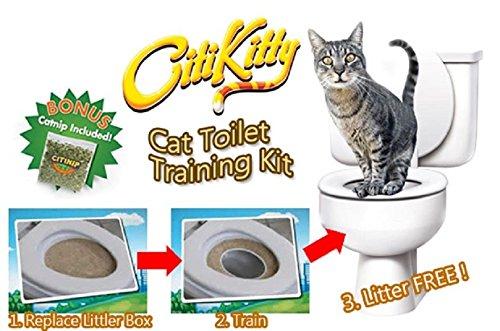 Amazing-K-chat-Kit-de-bac--litire-de-toilettes-Formation-Sige-Pot-Train-Systme-Pet-Hello-Kitty-Cat-Nip
