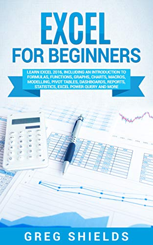 Excel Beginners Introduction Dashboards Statistics ebook product image