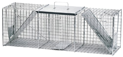 Havahart 1045 Live Animal Two-Door Raccoon, Stray Cat, Opossum, and Groundhog Cage Trap (Door Heart)