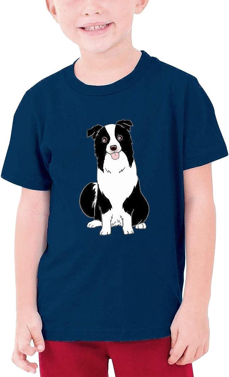 AiguanA Border Collie Stole My Heart Intelligent Breed Boys Graphic T-Shirt Top Navy