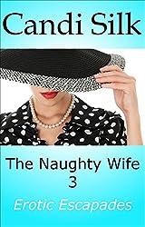 The Naughty Wife 3: Erotic Escapades