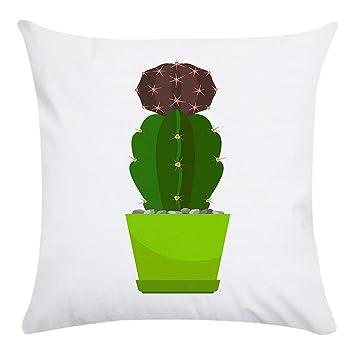 LouiseEvel215 Estilo Europeo Maceta Cactus Súper Suave Corto ...