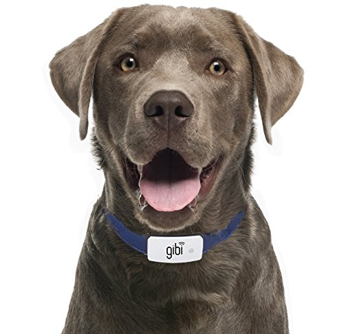 Gibi 2nd Gen Pet GPS Tracker - The Best GPS Dog Tracker for Customizing Safe Areas
